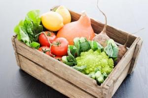 Grow with Hydroponics gardening