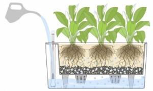 self watering planters diagram